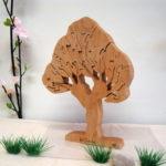 auboisfou_arbres_saule_gd